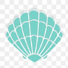 Sea Shells - Seashell Clam Mollusc Shell Clip Art PNG