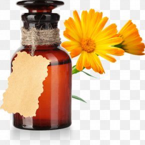 Calendula Officinalis - Vegetable Oil Castor Oil Sesame Oil Calendula Officinalis PNG