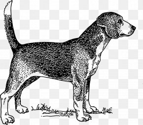 Puppy - Beagle Labrador Retriever Puppy Pet Sitting Clip Art PNG