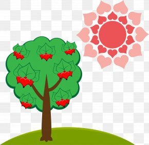 Vector Trees - Illustration PNG