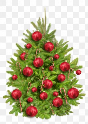 Christmas Tree - Christmas Tree Christmas Day Party Image New Year PNG