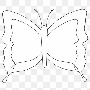 Butterfly - Line Art Butterfly Black And White Coloring Book Drawing PNG