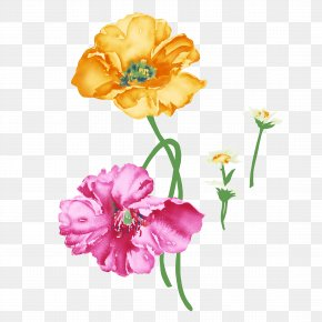 Flowers - Flower Rosa Chinensis Painting Illustration PNG