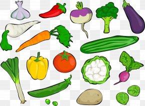 Vegetable Gathering - Broccoli Cauliflower Vegetable Radish Clip Art PNG
