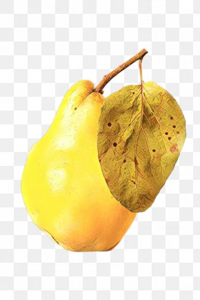 Food Fruit - Pear Pear Yellow Tree Plant PNG