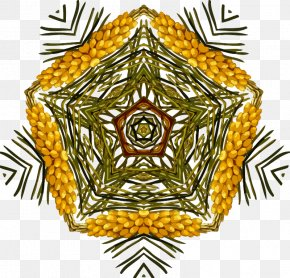 Design - Icon Design Clip Art Image PNG