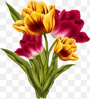 Bouquet Lily Family - Lily Flower Cartoon PNG