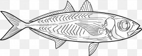 Line Art Fishing - Line Art Drawing Clip Art PNG