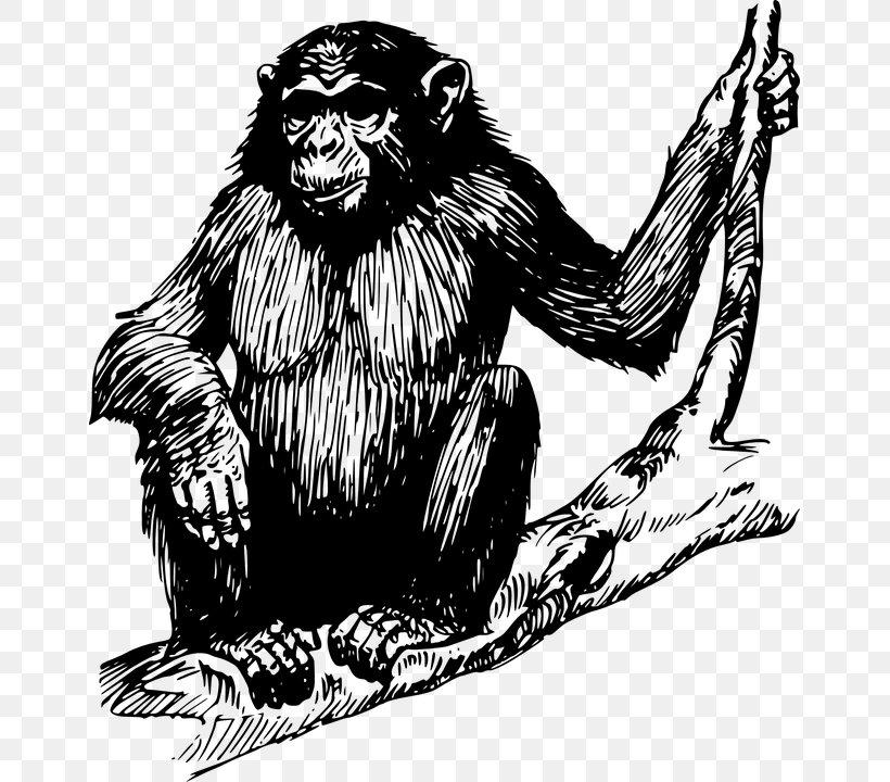 Ape Gorilla Chimpanzee Clip Art, PNG, 655x720px, Ape, Art, Black And White, Chimpanzee, Common Chimpanzee Download Free