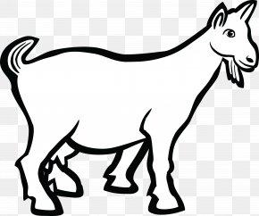 Goat - Boer Goat Line Art Drawing Clip Art PNG