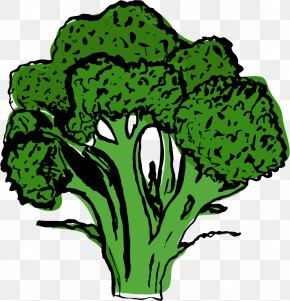 Celeriac Celery Celeriac - Greens Leaf Vegetable Plant Stem Infinity Foods PNG