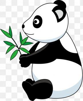 Giant Panda - Giant Panda Bear Clip Art PNG