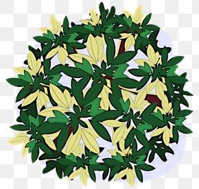Plant Flower - Leaf Flower Plant PNG