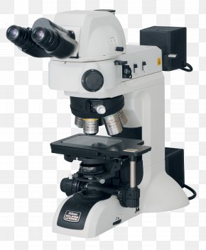 Microscope - Optical Microscope Image Analysis Optics Stereo Microscope PNG