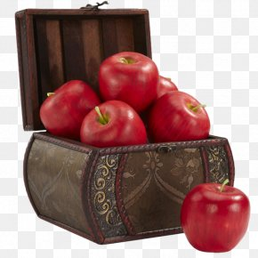 Apple Box Mounted - DeviantArt Stock Photography PNG