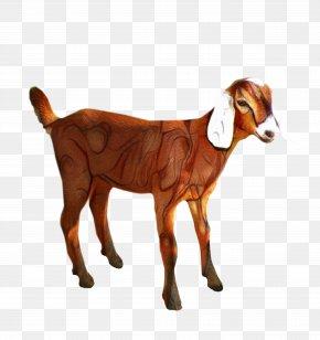 Clip Art Transparency Sheep Boer Goat PNG
