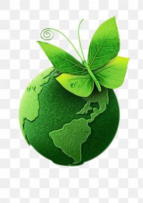 Herb Symbol - Green Leaf Plant Logo Symbol PNG