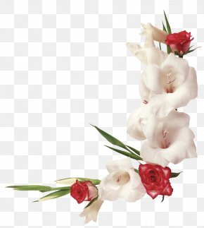Gladiolus - Islam Saint Name Day Scrapbooking Muslim PNG