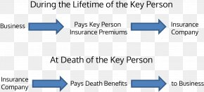 Business - Key Person Insurance Tax Payment Insurance Policy PNG