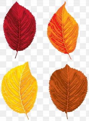 Fall Leaves Set Clipart Image - Santa Claus Autumn Leaf Color Clip Art PNG