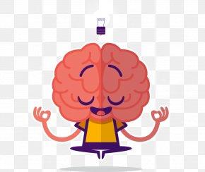 Human Brain - Human Brain Mind Midbrain PNG