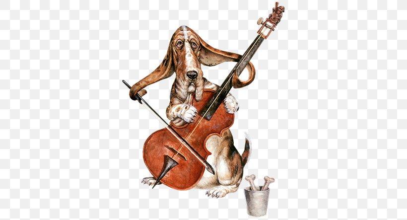 Violone Violin Double Bass Viola Cello Png 341x443px