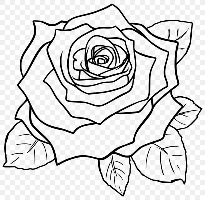 Drawing Rose Line Art Pencil Sketch Png 800x800px Drawing Area Art Art Museum Artwork Download Free Check out our rose line drawing selection for the very best in unique or custom, handmade pieces from our prints shops. drawing rose line art pencil sketch