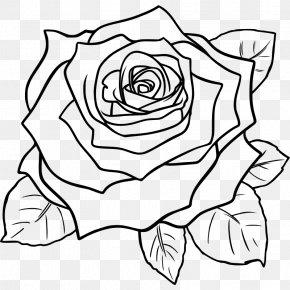 Rose Clip Art - Drawing Rose Line Art Pencil Sketch PNG