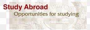 Education Abroad - Student Scholarship University Undergraduate Education Auslandsstudium PNG