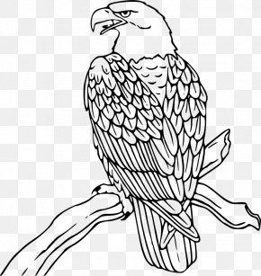 Free Eagle Clipart - Bald Eagle Clip Art PNG