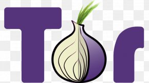 Intelligent Monitoring - Tor .onion Onion Routing Anonymous Web Browsing Anonymity PNG