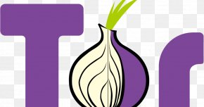 Polyline - Tor Computer Network Anonymity Onion Routing IP Address PNG