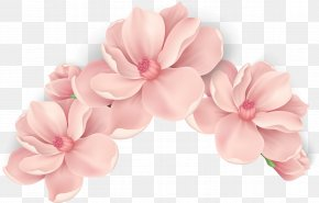 Vector Hand Painted Pink Flowers - Pink Flowers Pink Flowers PNG