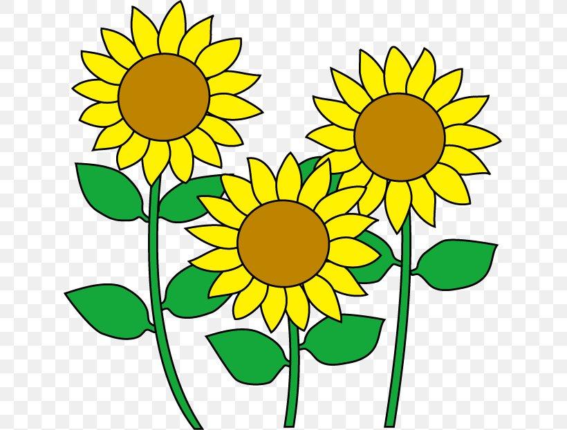 Common Sunflower Cartoon Clip Art, PNG, 636x622px, Common ...