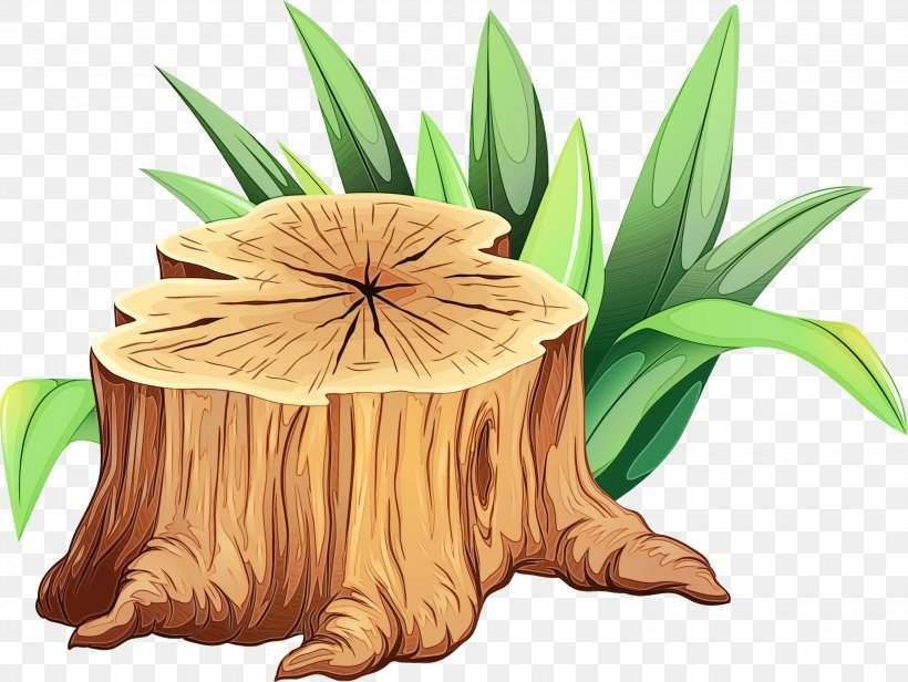 Tree Stump Png 3000x2257px Watercolor Fictional Character Flower Grass Paint Download Free
