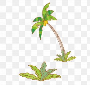 Plants And Coconut Tree Vector Material - Coconut Tree PNG