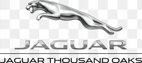 Car - Jaguar Cars Car Dealership Land Rover Used Car PNG