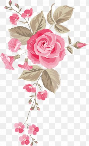 Hand-painted Flowers Background - Garden Roses Centifolia Roses Floral Design Cut Flowers Flower Bouquet PNG