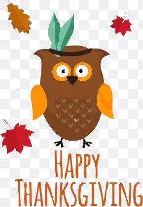 Tree Bird Of Prey - Owl Eastern Screech Owl Bird Bird Of Prey Tree PNG
