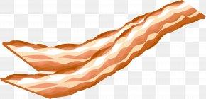 Vector Bacon - Sausage Bacon Italian Cuisine Ham Clip Art PNG