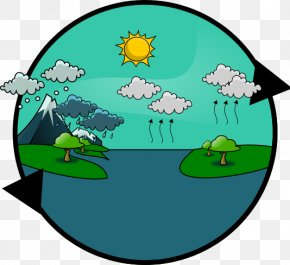 Water Cycle Clipart - Water Cycle Rain Knowledge Resource PNG