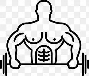 Man - Clip Art Human Body Muscle PNG