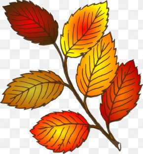 Autumn Cliparts - Autumn Leaf Color Clip Art PNG