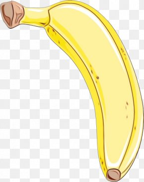 Cooking Plantain Ear - Banana Family Banana Yellow Plant Fruit PNG