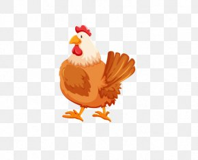 Chicken - Chicken Rooster Cartoon PNG