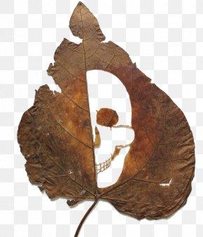 Cut Leaf Skull - Artist Work Of Art Sculpture Leaf Carving PNG
