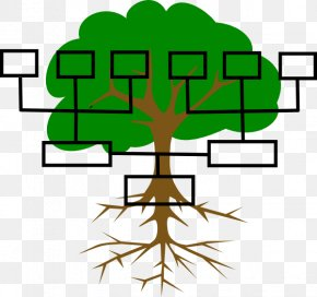 Family Line Cliparts - Family Tree Genealogy Ancestor Clip Art PNG