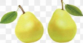 Pear Image - Pear Fruit Amygdaloideae Clip Art PNG