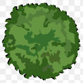 Tree Top View - Tree Shrub Clip Art PNG