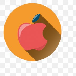 Infographic Circle Icon - Desktop Wallpaper Shadow Clip Art PNG